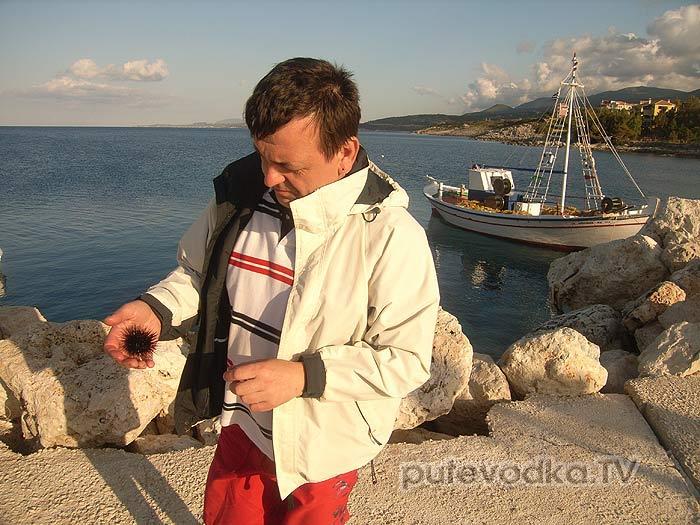 Закинтос (Zante). Св.Николай (Agio Nicolaus). Морские ежи.