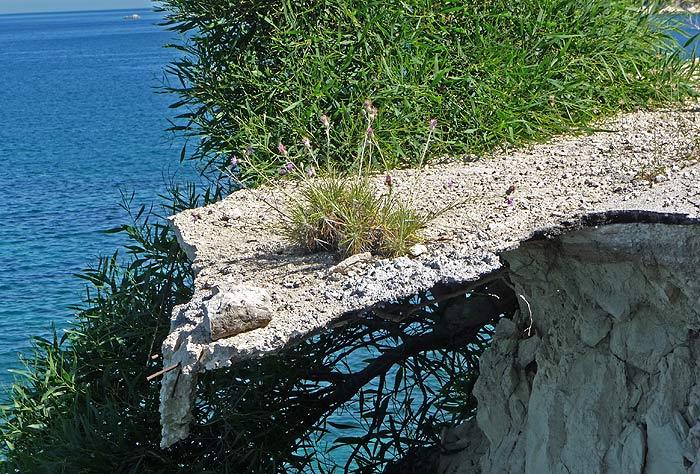 Греция. Ионическое море. Остров Закинтос (Zakynthos). Кошмарный сон асфальтового катка.