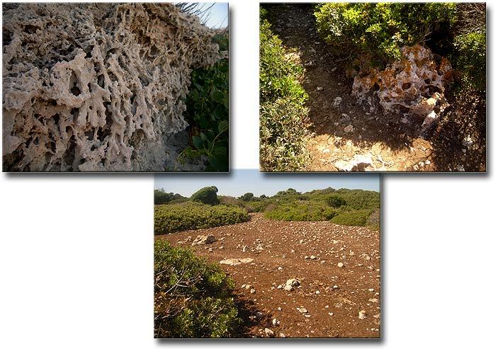 Строфады. Северный остров Гарпия. Камни.