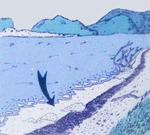 Берег лимана даже в штиль окаймлен рваной полосой серой пены.