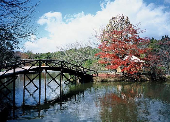 Япония. Фото Японской национальной туристической организации.
