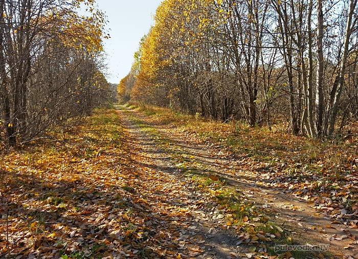 Дорога Кимры— Строево