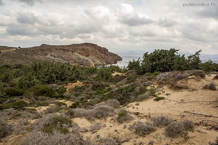 Дюны, можжевеловый лес.