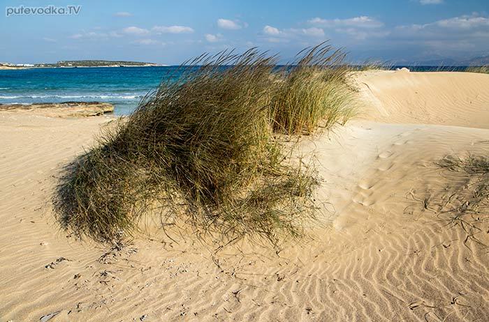 Дюны за пляжем