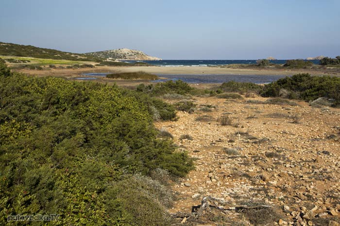 Лиман на низком осыхающем берегу.