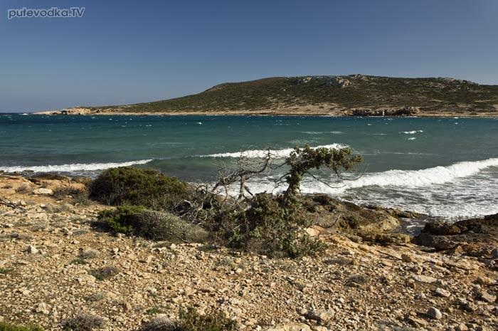 Западный берег бухты Гайдурониси